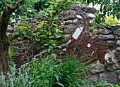 Design of garden architect Mumme, an artist garden matures