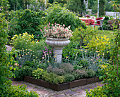 Herb bed with thymus vulgaris and citriodorus (thyme)