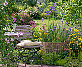 Barrel with iris sibirica, laevigata and pseudacorus (marsh iris)