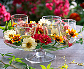 Lanterns in small glasses, decorated with zinnia on a glass bowl