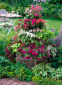 Barrel tower planted with balcony flowers