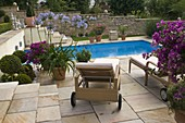 Mediterranean flair swimming pool taken in terrace with tub plants