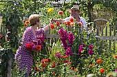 Farm Garden with Dahlia, and Gladiolus