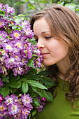 Woman smelling a Rosa 'Violet Blue' (Rambler-Rose)