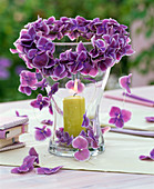 Threaded Hydrangea 'Tivoli Blue' flowers to make a lantern