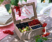 Gift with berries in small wooden box