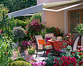 Terrace with potted plants, awning as sunscreen