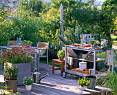 Outdoor kitchen, pots of Origanum (oregano), Rosmarinus