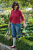 Woman with freshly harvested Brassica and Allium porrum