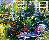 Bed planted with potted plants