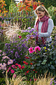 Woman picking aster (autumn aster) and miscanthus (miscanthus)