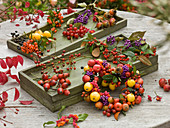 Collected autumn fruits and berries in wooden boxes and wrapped into heart shape