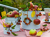 Malus (apple, ornamental apple) with autumn leaves in white tin cans