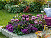 Flower bed with wood trim