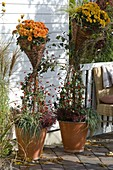 Wicker Willow Aid with Basket for planting