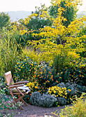 Flower bed with container plants in yellow and silver gray