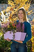 Woman with purple window box with Erica gracilis 'Beauty Queen Silvia'