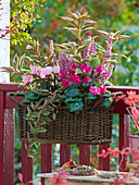 Basket instead of balcony box on balcony railing