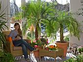 Conservatory with Phoenix roebelenii (Dwarf Date Palm)