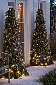 Deco pyramids with fir branches