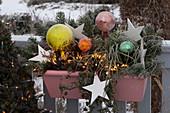 Christmas balcony box with rose balls