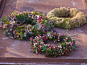 Autumn wreaths made of pernettya (peat myrtle), hedera (ivy)