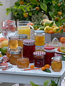 Citrus fruit jams
