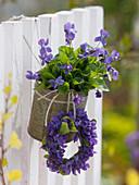 Viola odorata (fragrance violet) in tin box and small wreath