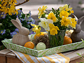 Small bouquet of narcissus on tray with Easter bunnies