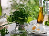 Herbs for Frankfurter Grüne Sosse