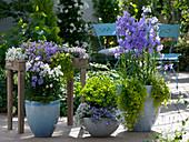 Terrasse mit Glockenblumen