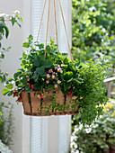 Wooden basket as a flower basket