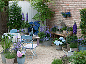 Terrace with blue plants
