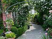 Gravel path to the house, bordered with Buxus (Box) hedge and ball
