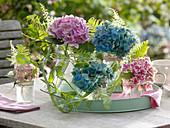 Flowers of Hydrangea (Hydrangea), Astilbe (Pier)