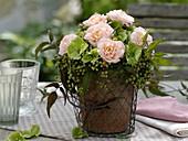 Rose, Hydrangea, Sambucus nigra