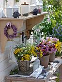 Moth repellent plants and medicinal herbs bouquets