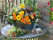 Arrangement of medicinal plants and tea herbs