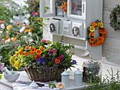 Colorful herbal basket