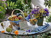 Basket with apples, plums, pears, mirabelles, herb bouquet