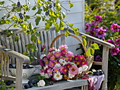 Basket with freshly cut summer asters on wooden bench