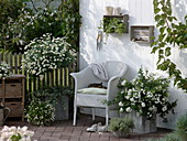 White terrace with wicker chair and tub plants