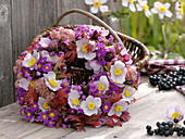 Wreath of autumn anemones, asters, sedum and beaked leaves