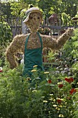 Scarecrow made of straw with gardener's apron in the cottage garden
