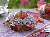 Small table decoration with apple and hydrangea flowers