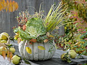 Planted white pumpkin with ornamental cabbage, grass and abelie