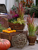 Homemade wicker baskets with autumnal planting