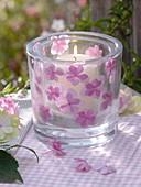 Lantern with pressed hydrangea flowers