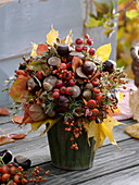 Autumn bouquet of wild fruits from the forest walk