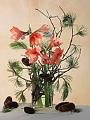 Winter bouquet with salmon-colored Hippeastrum (Amaryllis), Pinus